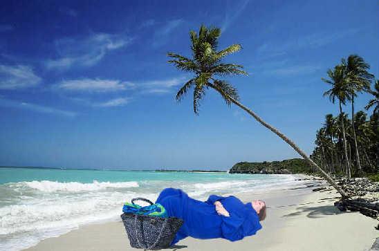 Beach Blanket (with sleeves) Bingo